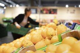 En direct - les commerces d'alimentation ouvriront plus longtemps