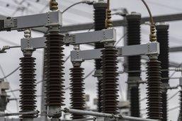 Une fouine à l'origine d'une panne d'électricité