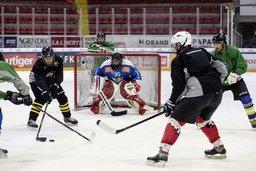 Le hockey sur glace perd des plumes