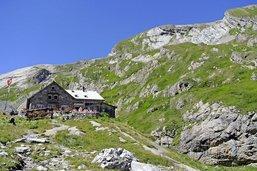 Une fribourgeoise dans les Alpes