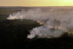 L'Amazonie à petit feu