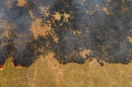 Les incendies continuent à ravager l'Amazonie et le Pantanal
