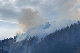 Le feu de forêt à Crésuz circonscrit