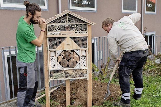 Une opération «biodiversité» en ville