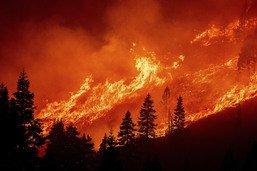 Appel à accélérer l'adaptation aux effets du changement climatique